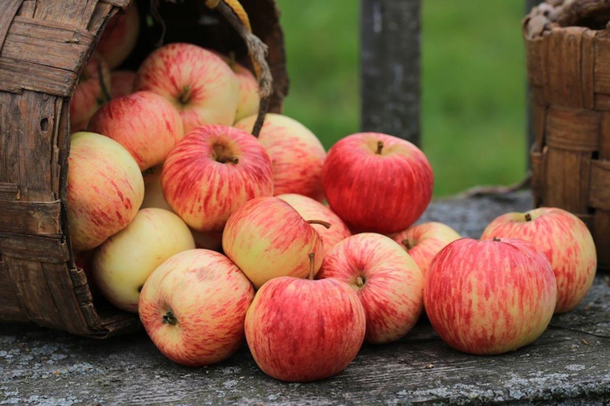 Дієтолог розповіла, як правильно їсти фрукти