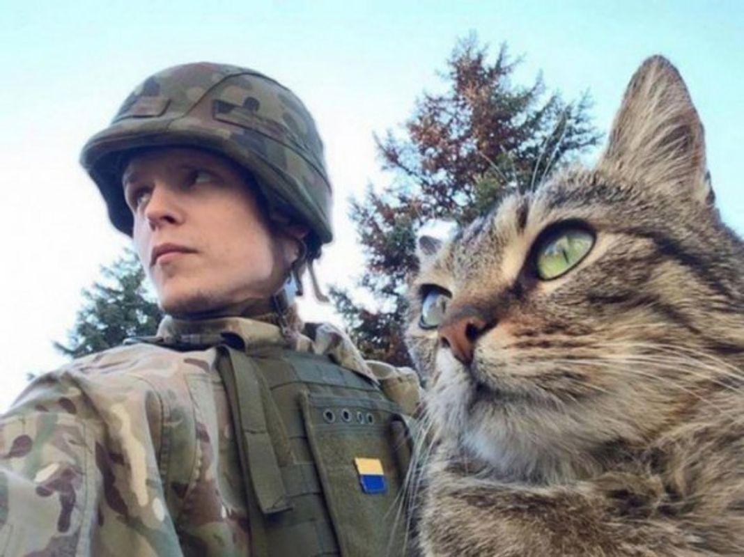 Війна і котики: зворушливі фото, які треба побачити кожному