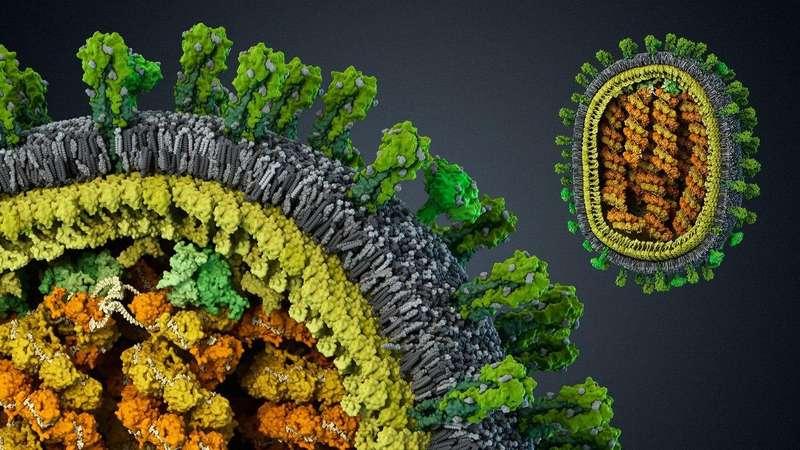 Щеплення від грипу може спричинити небезпечне ускладнення