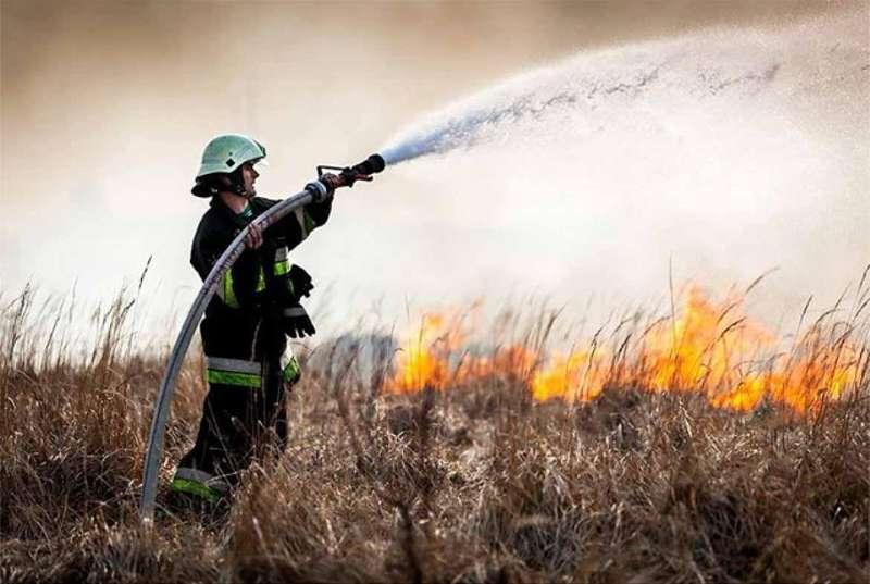 У мережі показали вражаючі наслідки спалювання сухої трави (відео)