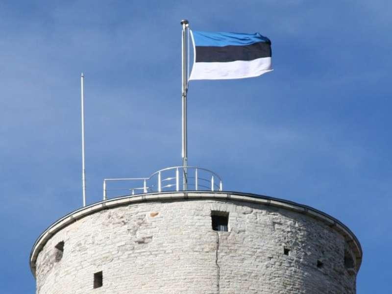 Стало відомо, коли Естонія остаточно облаштує кордон з Росією