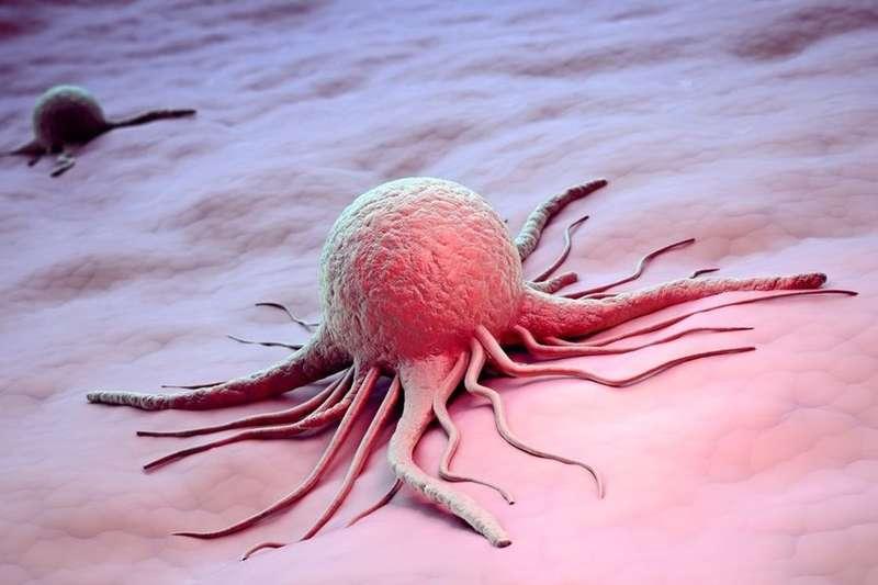 Супрун розповіла про фактори, від яких залежить імовірність розвитку раку в людини