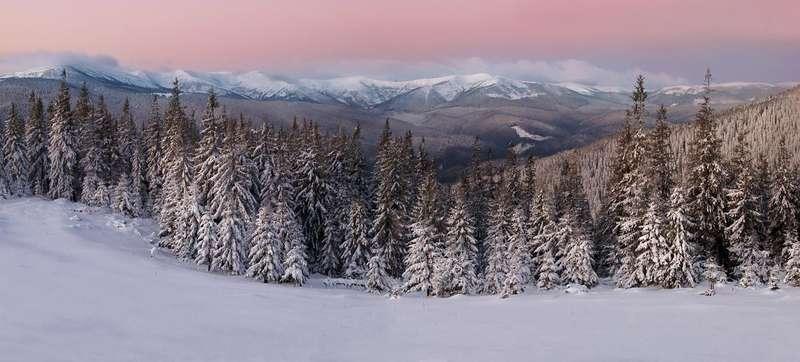 Снігова казка: неймовірні фото зимових Карпат