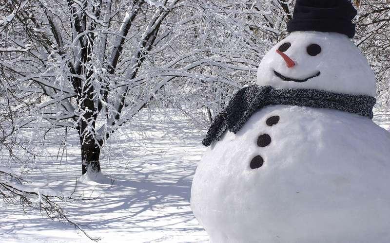 Буде до -25°C: синоптики кардинально змінили прогноз на зиму