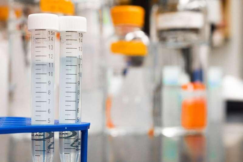 Епідемія грипу в Україні. Що варто знати про штами цього вірусу
