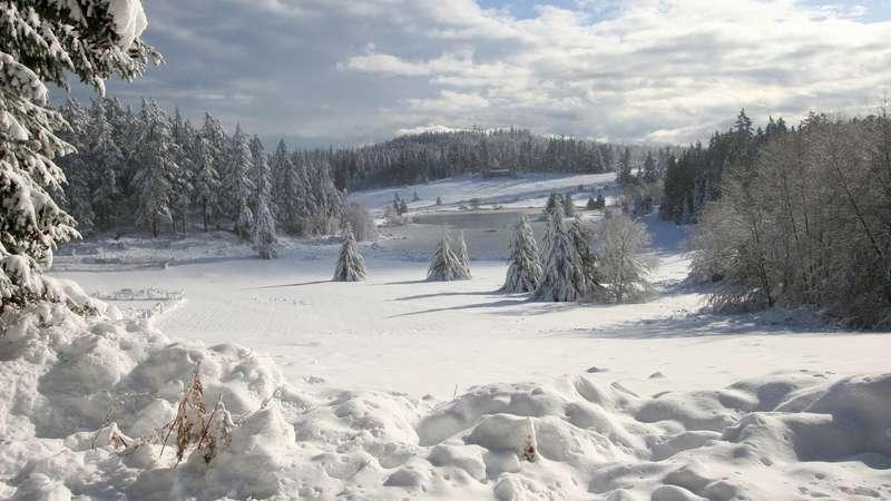 У Карпатах продовжуютьшукати туриста, який загубився у горах на Святвечір