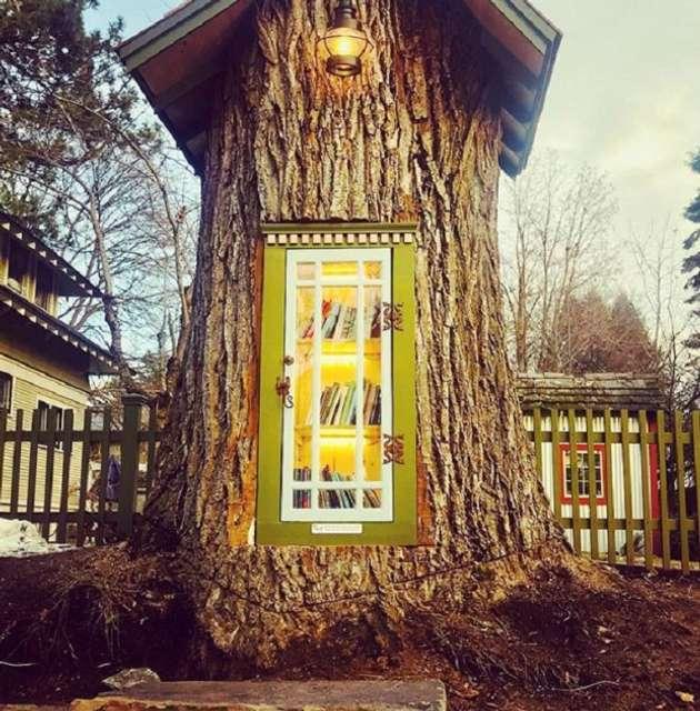 У США жінка перетворила мертве дерево на бібліотеку