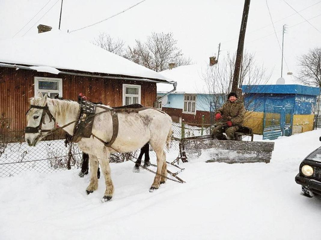 Запрягайте, хлопці, коней! Українські селяни придумали незвичний спосіб розчищання снігу (фото)
