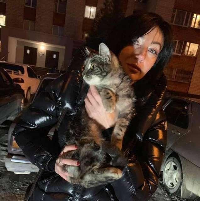 Кішку, яку підлітки скинули з 9-го поверху, знайшли. Тварина жива