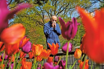Весна без сліз і нежитю: як підготуватись до сезону алергії