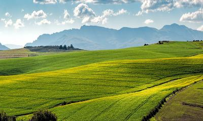 Новостворені ОТГ отримають у комунальну власність більше 2 млн га землі, — Держгеокадастр